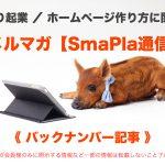 【必須対策】スマホやiPadやホームページのバックアップ