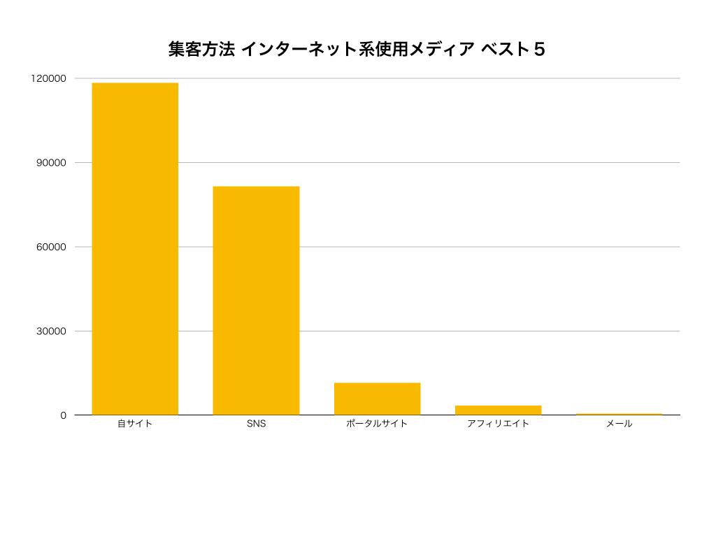新規集客方法種類メディア別グラフ