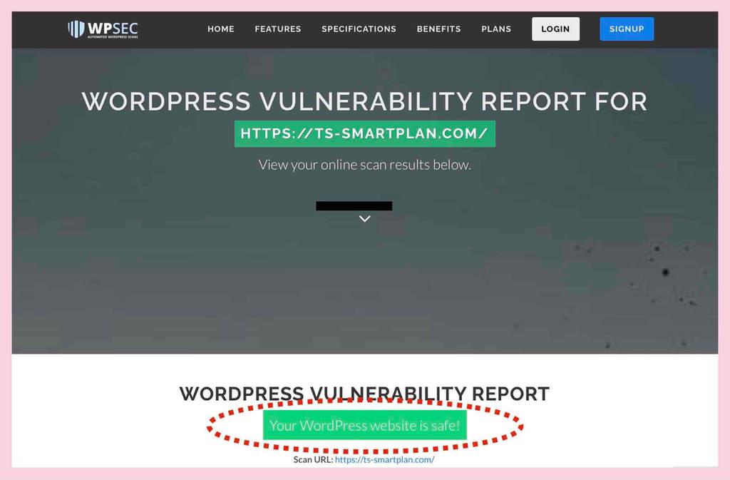 WPSEC.comのセキュリティチェック結果例